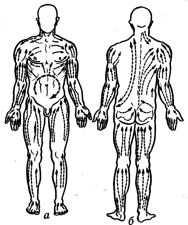 Физическая культура (2)