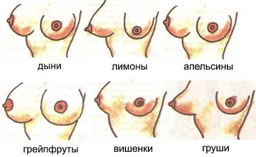что нужно есть чтобы грудь росла: